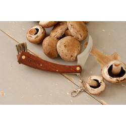 Faca para colheita de cogumelos