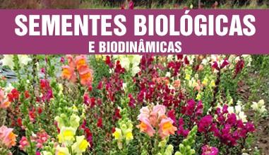 Sementes Biológicas - Plantas e Flores Aromáticas e Medicinais